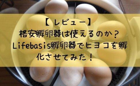 【レビュー】 格安孵卵器は使えるのか? Lifebasis孵卵器でヒヨコを孵化させてみた!